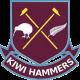 Kiwi Hammers
